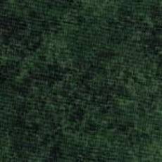 Spraytime tannengrün
