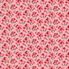 Penelope fleur coral
