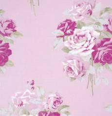 Slipper Roses pink Slipper