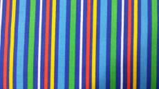 Oceans of fun stripe
