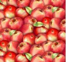 The harvest apple red