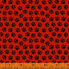 Dog paws red