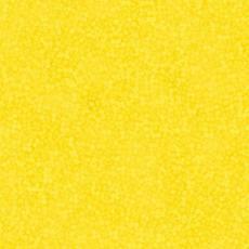 Brighton yellow