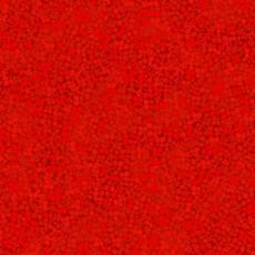 Brighton red