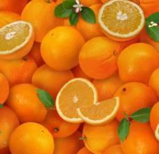 Fruitbasket orange
