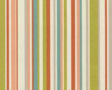 Funky stripe coral