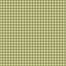 Welcome Home Flannel  Checker Green
