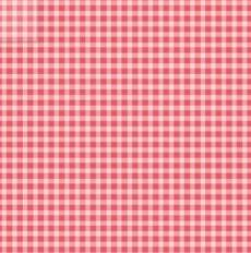 Welcome Home Flannel  Checker Pink