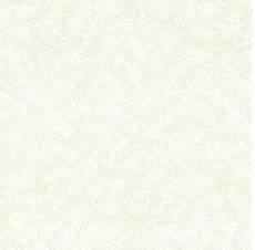 Classic Blenders white