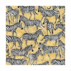 Safari - Zebra
