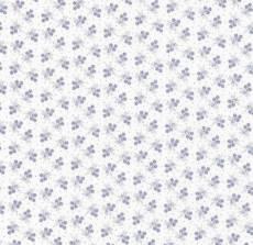 Kyoto weiß blau flower