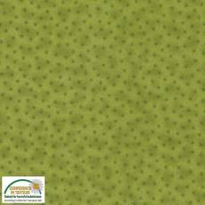 Quilters Basic Sternchen grün