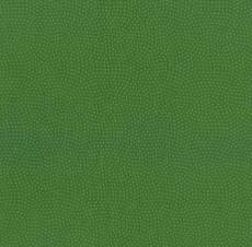 Basic Spin grass