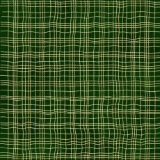 Christmas Wonders Green checker