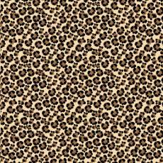 Shoe Love Leopard Skin
