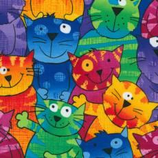 Multi Cats