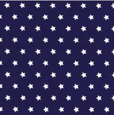 Hamburg blau-weiß stars