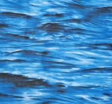 Habor Waves