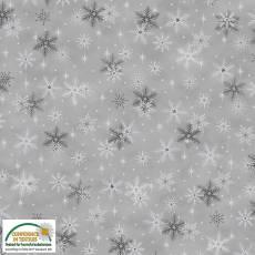 Magic Christmas grey cristall