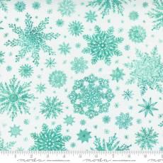 Star flower winter snowflake watercolor