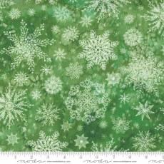 Star flower winter snowflake green