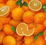 Fruitbasket orange