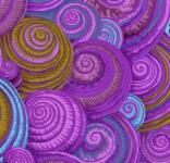 Kaffe Fassett Spiral shells lavendar