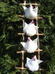 Vier Hühner auf der Leiter